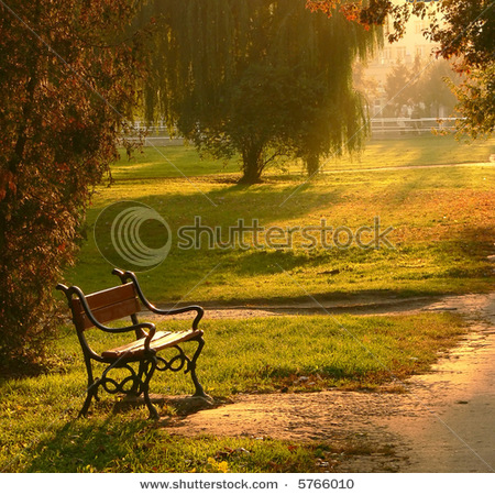 stock-photo-a-red-bench-in-the-park-at-sunset-5766010.jpg